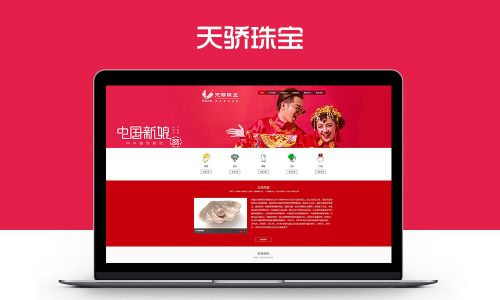 天骄珠宝网站设计